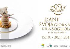 Deseti dani švoja u sjeverozapadnoj Istri